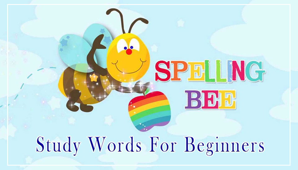 Spelling -Bee Study Words For Beginners