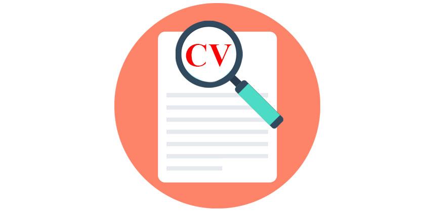 Writing a Resume/ CV/ Curriculum Vita in English