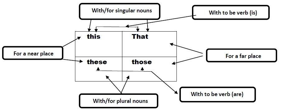 Demonstrative Adjectives vs Demonstrative Pronouns